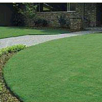 Scotts - Garden & Lawncare
